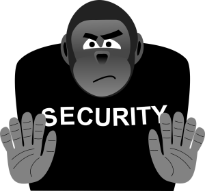 security-1365599_1280.png