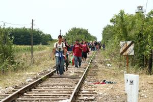 Migrants_in_Hungary_2015_Aug_010.jpg