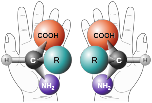 Chirality_with_hands.png